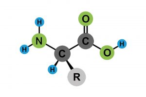 Amino Acids Definition